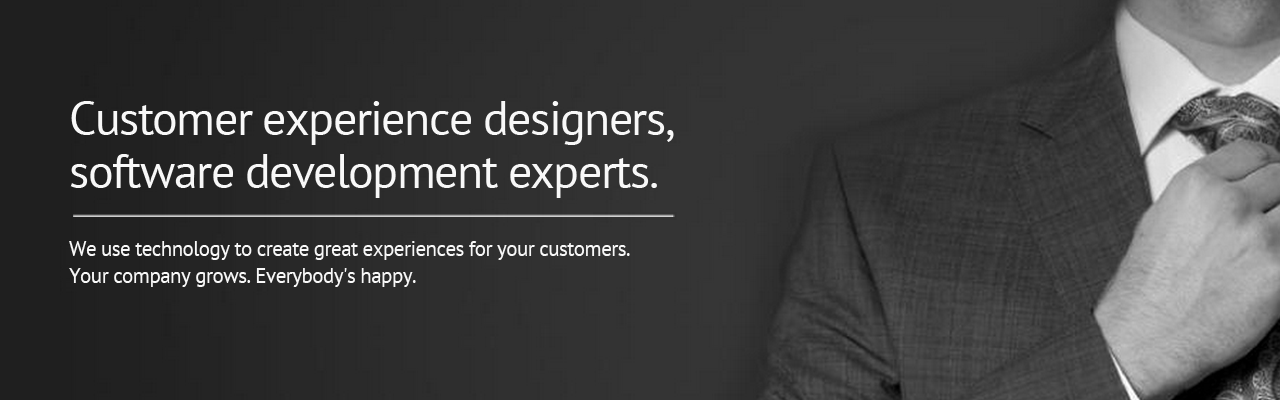Customer experience designers, software development experts.